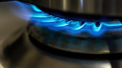 Воронежские власти направят средства Фонда капремонта на проверку газового оборудования