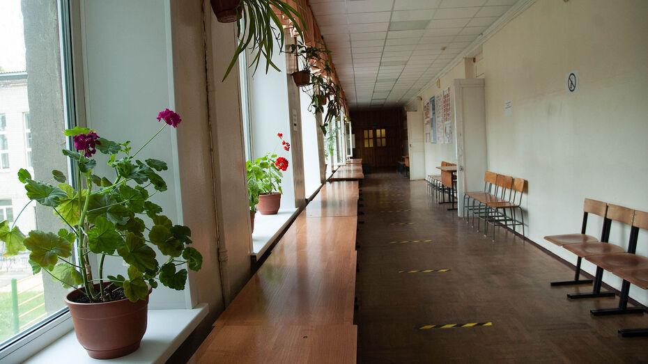Из-за ОРВИ в 2 воронежских школах ввели частичное дистанционное обучение