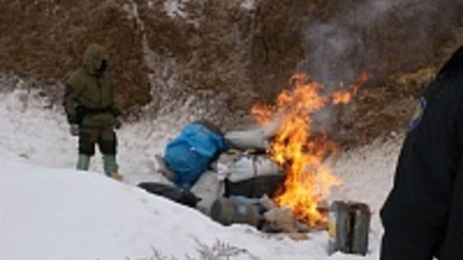 Воронежские наркополицейские сожгли 20 кг наркотиков