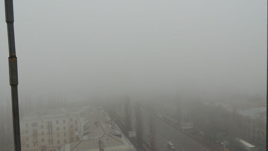 Желтый уровень опасности в Воронежской области объявили из-за тумана