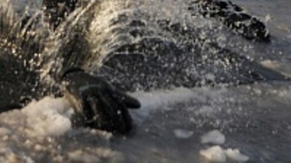На пруду в Петропавловском районе, спасая собаку, утонул охотник