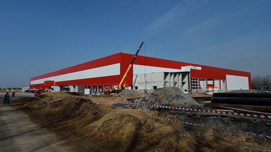 Крупнейший в Черноземье логистический центр запустится под Воронежем в 2015 году