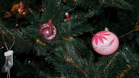 Первую новогоднюю елку поставили в Воронеже