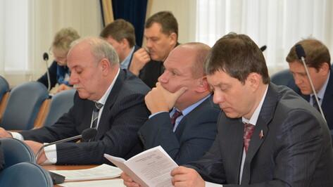Воронежские депутаты определятся с кандидатами в комиссию по выборам мэра 7 февраля