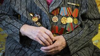 В Воронежской области осталось около 28 тыс ветеранов Великой Отечественной войны