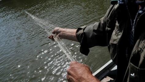 Воронежцам запретят ловить рыбу в реке Дон с 20 апреля