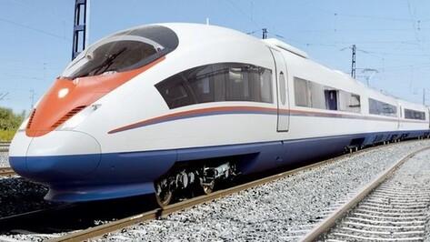 Из Воронежа в Москву можно будет добраться поездом менее чем за 3 часа