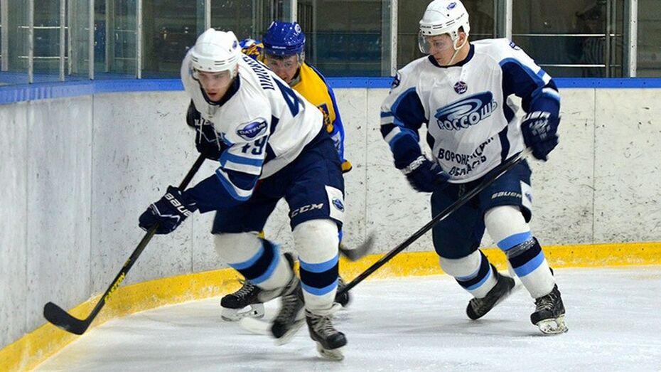 Хоккейная «Россошь» повторно выиграла у «Брянска»