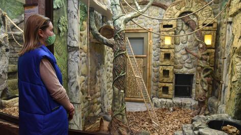 Окна в джунгли. В воронежском зоопарке открыли новый зал для теплолюбивых животных