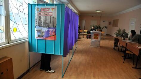 «Сомнений в цифрах не возникнет». Как воронежские партийцы оценили выборы-2016