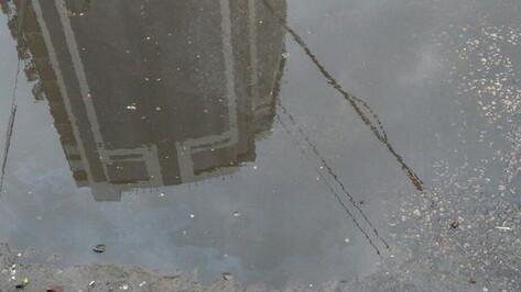 Новая рабочая неделя принесет в Воронеж дожди