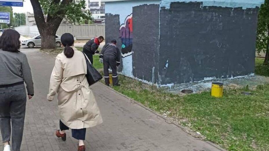 «Наделали искусства». В Воронеже закрасили очередной стрит-арт