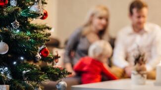 Условия получения новогодних выплат на детей до 8 лет разъяснили воронежцам