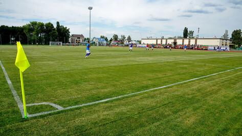 Реконструкцию футбольного поля на стадионе «Локомотив» в Воронеже завершат летом 2020 года