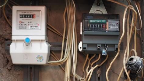 Потребление электроэнергии в Воронежской области за год увеличилось на 5,1%
