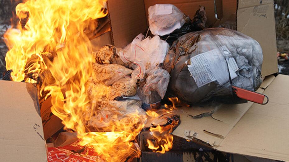 Воронежские сотрудники ФСКН сожгли 30 кг наркотиков
