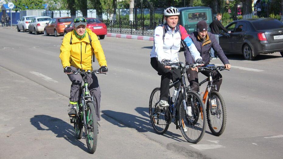 Глава поселения в Репьевке поддержал всероссийскую акцию «На работу на велосипеде»