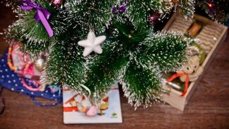Верхнемамонцев попросили поучаствовать в акции «Хочу стать Дедом Морозом»