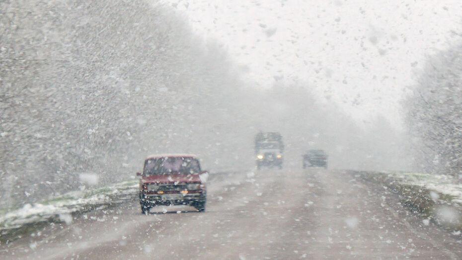 Спасатели предупредили жителей Воронежской области о сильном ветре и снежных заносах