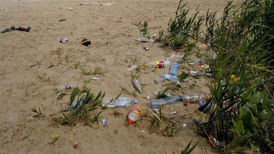 Воронежские студенты очистят от мусора берег Усманки