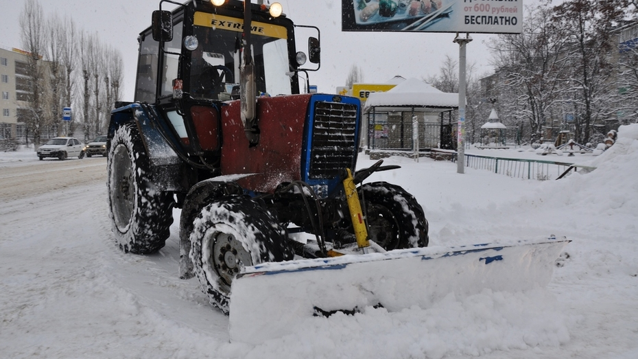 Павловск накрыла вторая волна снегопадов