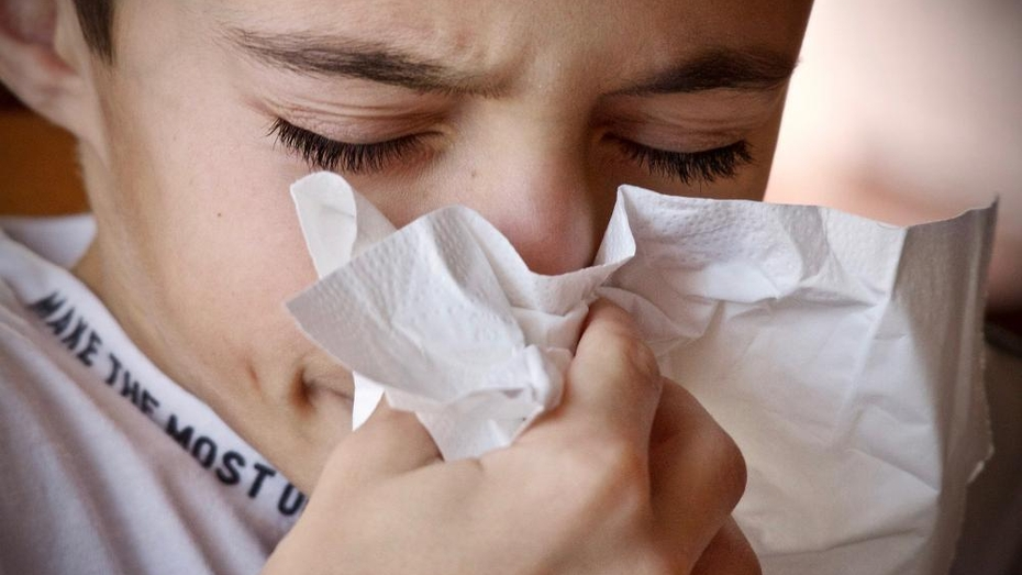 Заболеваемость ОРВИ в Воронежской области показала легкое снижение