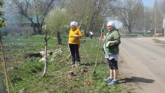 Активисты хохольского села Гремячье попросили земляков поучаствовать в субботнике