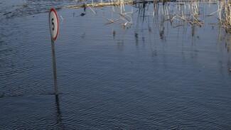Затопление двух низководных мостов спрогнозировали в Воронежской области