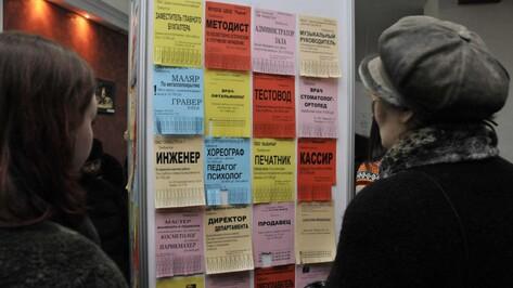 Воронежские студенты приступили к активным поискам работы