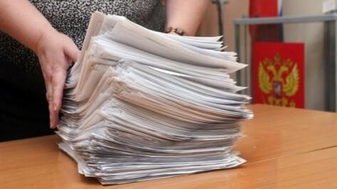 Об участии в выборах в Воронежскую гордуму заявили еще два кандидата