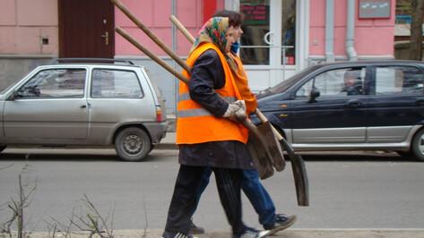 К уборке улиц Воронежа от снега привлекут больше дворников