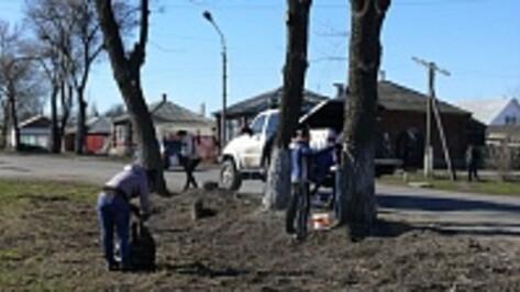 В Поворино на субботник вышли около 300 местных жителей