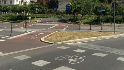 «Веловоронежцы»: изменение ПДД снизит административные барьеры при создании велосипедных маршрутов