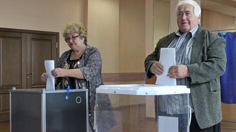 В Терновском районе выбрали депутатов облдумы и местных советов