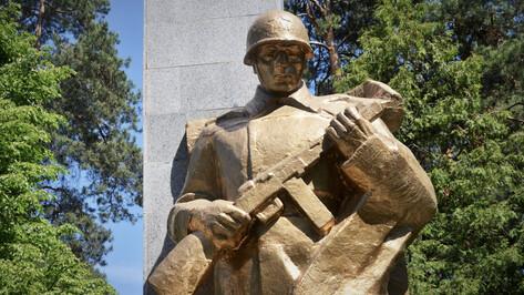 Проект РИА «Воронеж». Где этот памятник? Мемориалы-близнецы