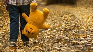 Волонтеры попросили помощи воронежцев в поисках 3-летнего липецкого мальчика