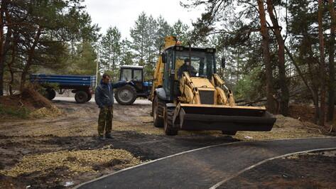 В сосновом массиве калачеевского села Заброды появилась «Тропа здоровья» за 5,3 млн рублей