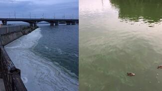 Экологи объяснили появление пены в Воронежском водохранилище