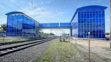 В Воронеже открылся переход над железной дорогой на станции «Машмет»