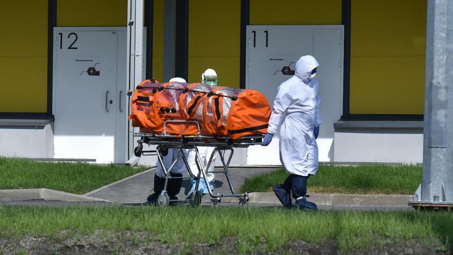 За сутки 6 воронежцев умерли от коронавируса
