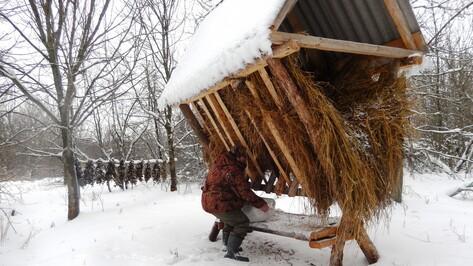 В 2016 году подгоренские охотники скормили диким зверям и птицам тонну зерна