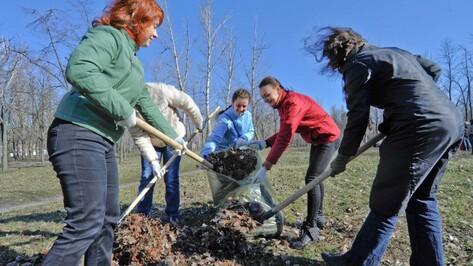 В Воронеже в месячнике благоустройства поучаствовали более 194,1 тыс человек
