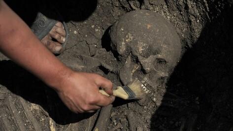 На никелевом месторождении в Новохоперском районе обнаружили захоронение древних иранцев