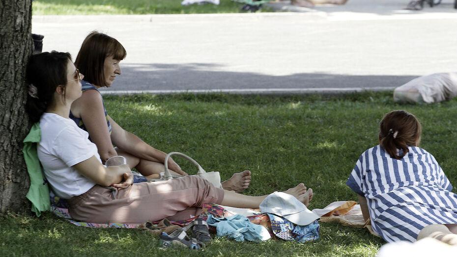 Жителей Воронежской области предупредили о сильной жаре 1 и 2 августа
