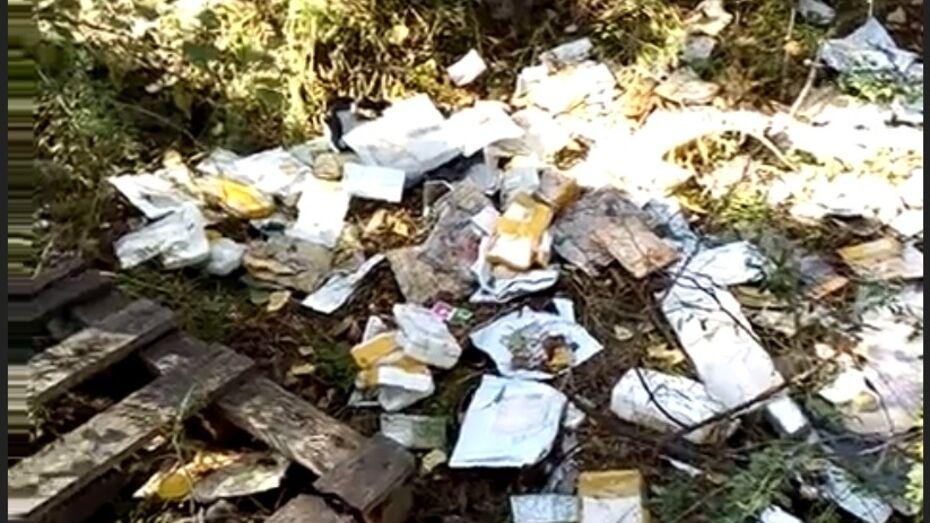 Свалка в лесу с воронежскими посылками «Почты России» попала на видео