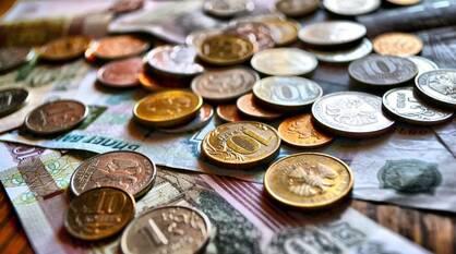 Прожиточный минимум в Воронежской области вырос на 411 рублей