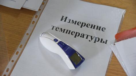 Две школы закрыли на карантин по ОРВИ в Воронежской области