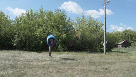 В Воронежской области Tele2 подготовилась к летнему сезону