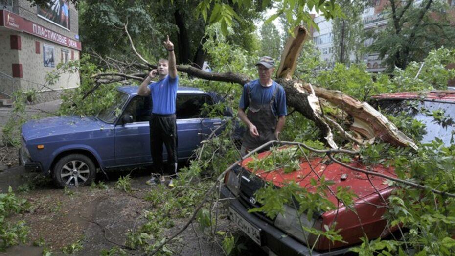Главный метеоролог региона раскритиковал экстрасенса, предсказавшего ураган в Воронежской области