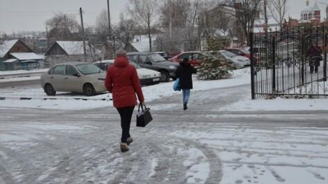 Спасатели предупредили воронежцев о мокром снеге